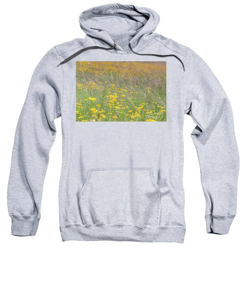 Field Of Yellow Flowers In A Sunny Spring Day Sweatshirt