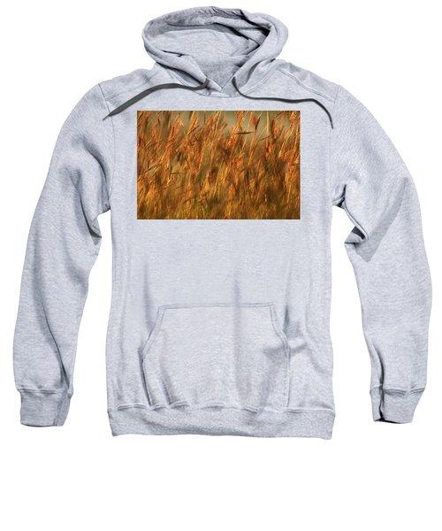 Fields Of Golden Grains Sweatshirt