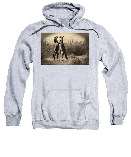 Fighting Stallions Sweatshirt