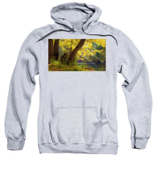 Filtered Light 2 Sweatshirt