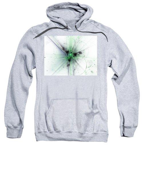 Finding Reason Sweatshirt