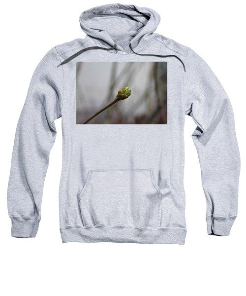 First Bud Sweatshirt