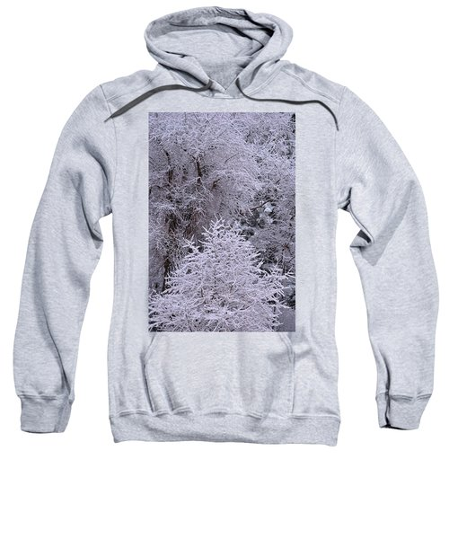 First Snow I Sweatshirt