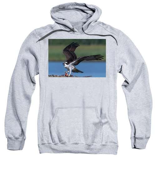 Fish For The Osprey Sweatshirt