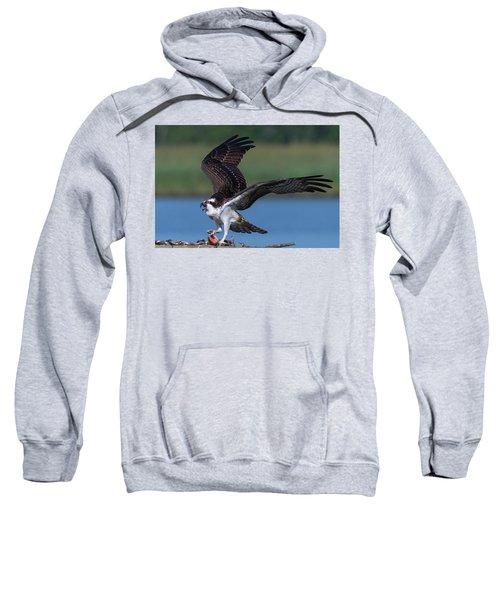 Fish For The Osprey Sweatshirt