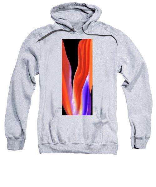Flame - Bird Of Paradise   Sweatshirt