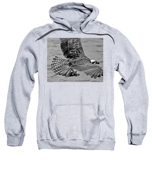 Flight Of The Osprey Bw Sweatshirt