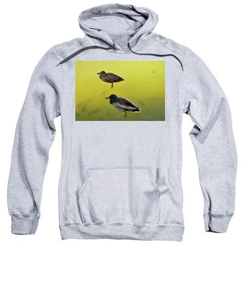 Floating Around Sweatshirt