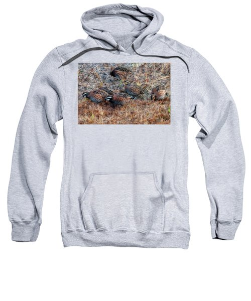 Flock Of Quail Feeding In Field Sweatshirt