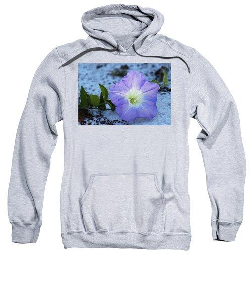 Florida Bonamia Sweatshirt