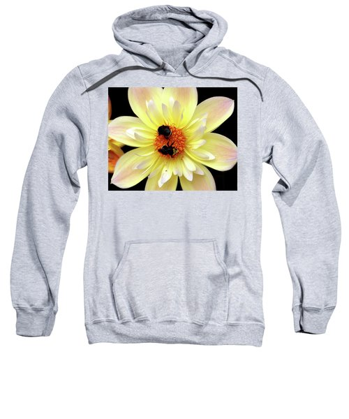 Flower And Bees Sweatshirt