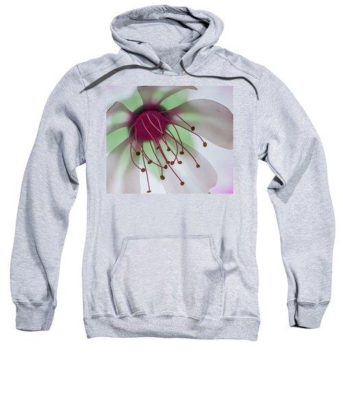 Flower Art Sweatshirt
