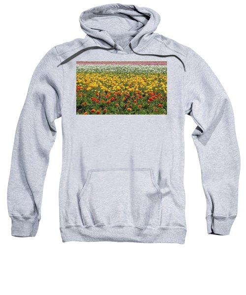 Flower Blanket From Carlsbad Sweatshirt