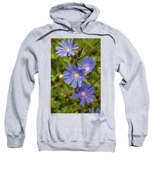 Flower Chicory Sweatshirt
