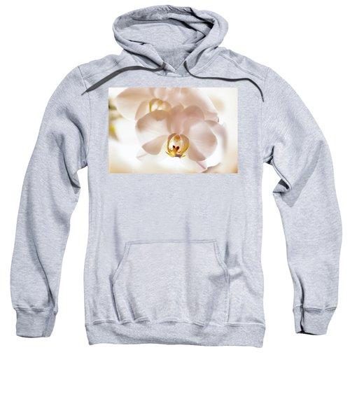 Flowers Delight- Sweatshirt