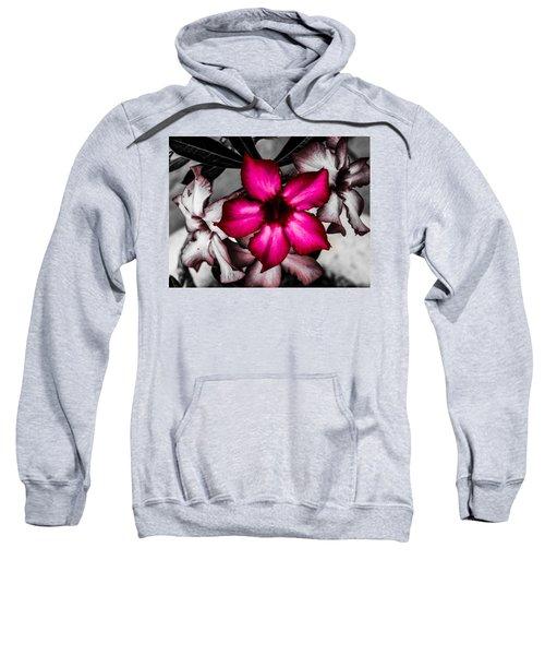 Flower Dreams Sweatshirt