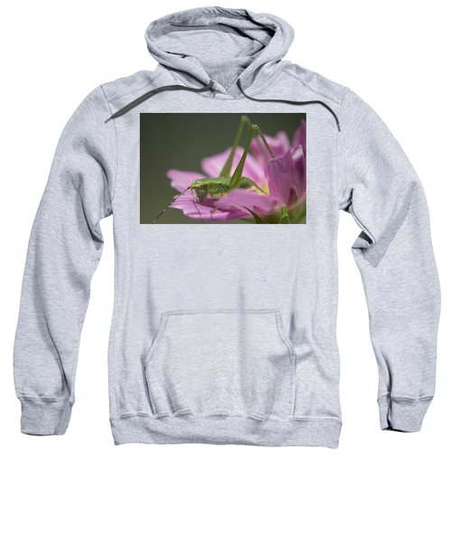 Flower Hopper Sweatshirt