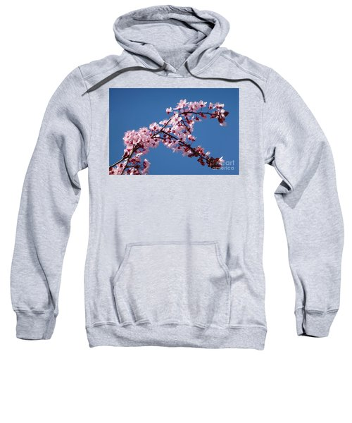 Flowering Of The Plum Tree 4 Sweatshirt
