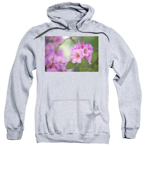 Flowers Of Pink Rhododendron Sweatshirt