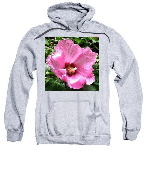 #flowers #pink #floral Sweatshirt by Jennifer Beaudet