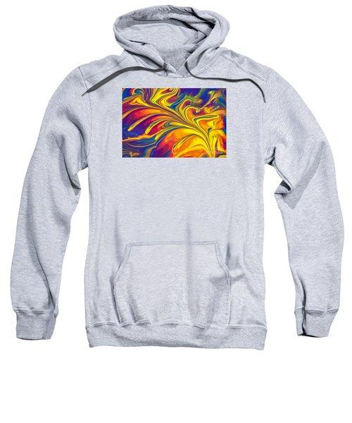 Flying Duck Sweatshirt