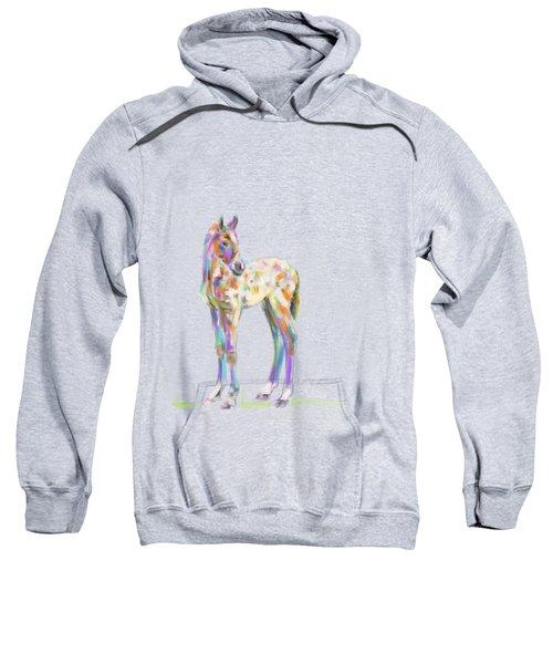 Foal Paint Sweatshirt