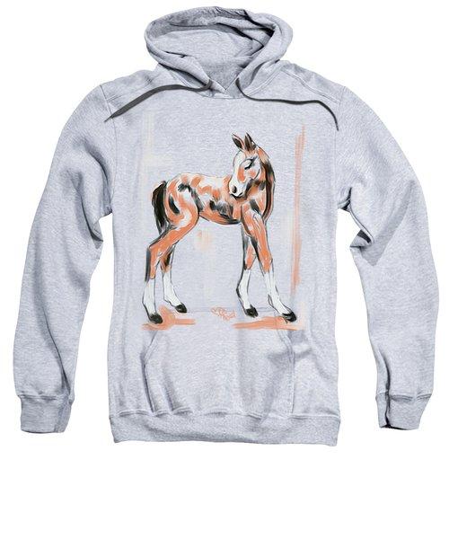Foal Peach Sweatshirt