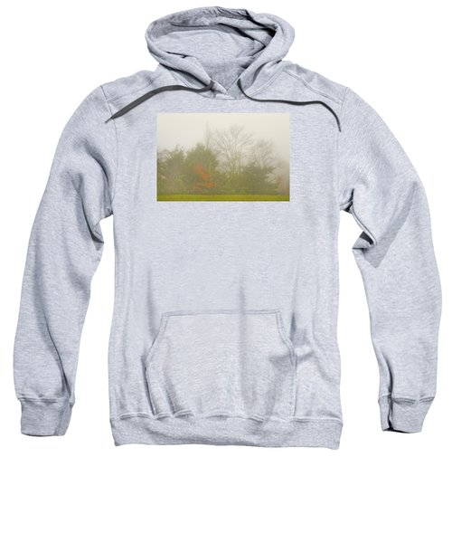Fog In Autumn Sweatshirt