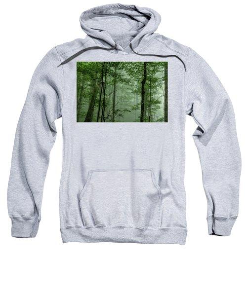 Fog In The Forest Sweatshirt