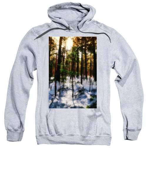 Forest Dawn Sweatshirt