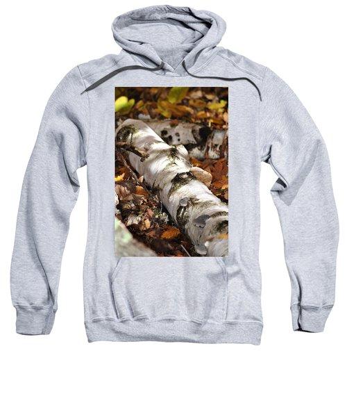 Forest Floor Sweatshirt