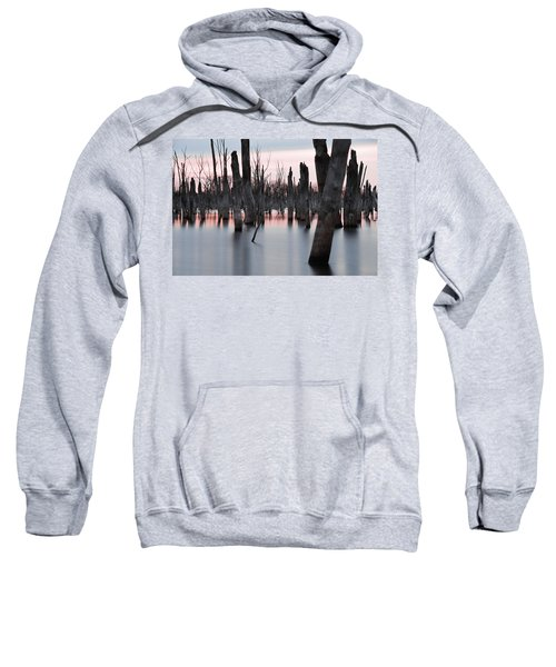 Forest In The Water Sweatshirt