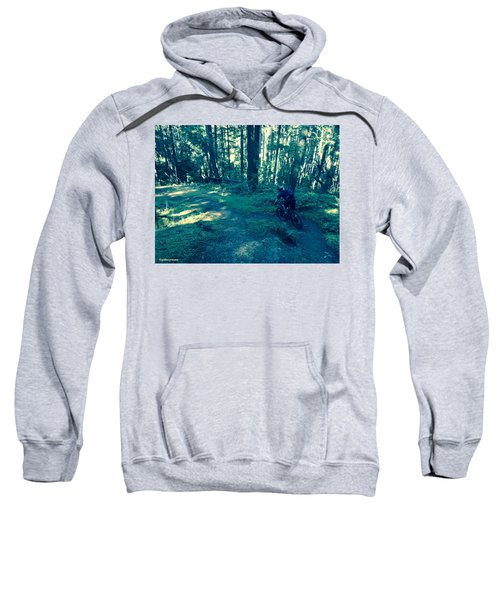 Forest Ride Sweatshirt
