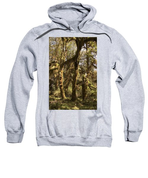 Forest Setting In Hoh Rain Forest Sweatshirt