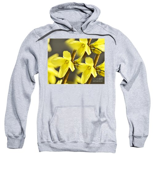 Forsythia Three Sweatshirt