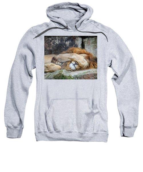 Fort Worth Zoo Sleepy Lion Sweatshirt