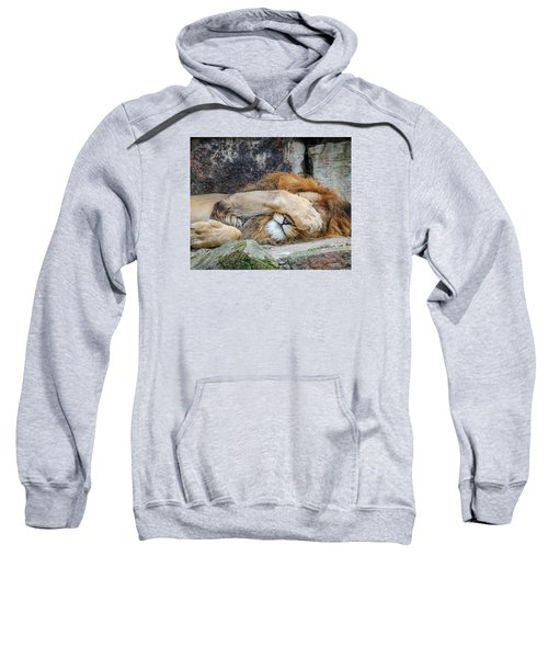 Fort Worth Zoo Sleepy Lion Sweatshirt