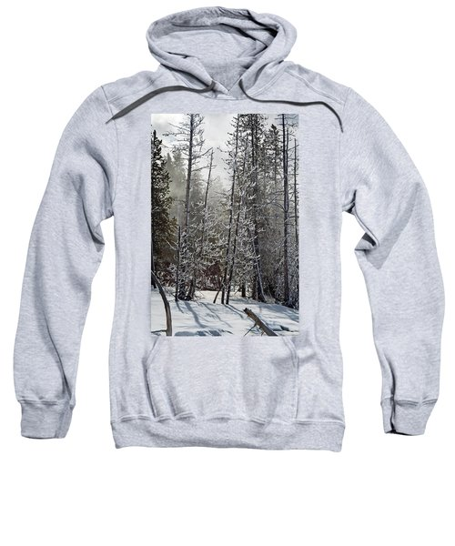 Fountain Paint Pots Shrouded In Snow And Ice Sweatshirt
