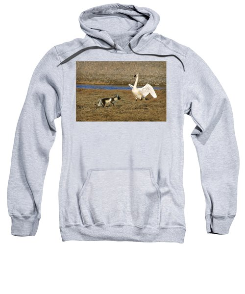 Fox Vs Tundra Swan Sweatshirt