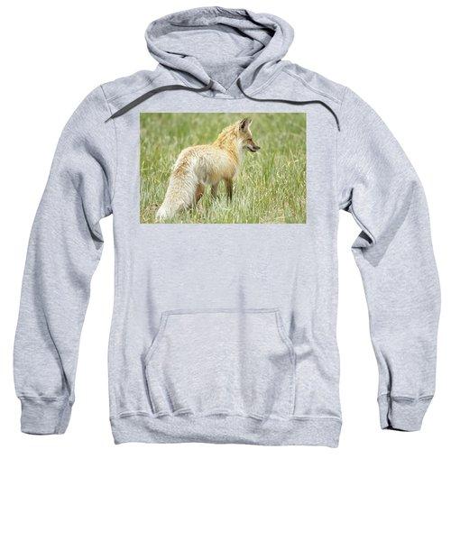Foxy Lady Sweatshirt