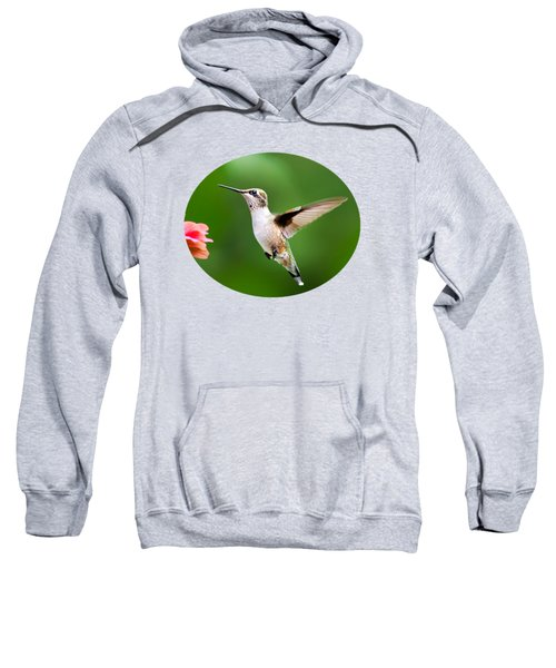 Free As A Bird Hummingbird Sweatshirt by Christina Rollo