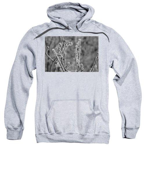 Frost 1 Sweatshirt