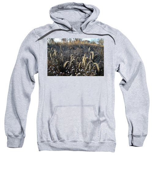 Frosted Foxtail Grasses In Glacial Park Sweatshirt