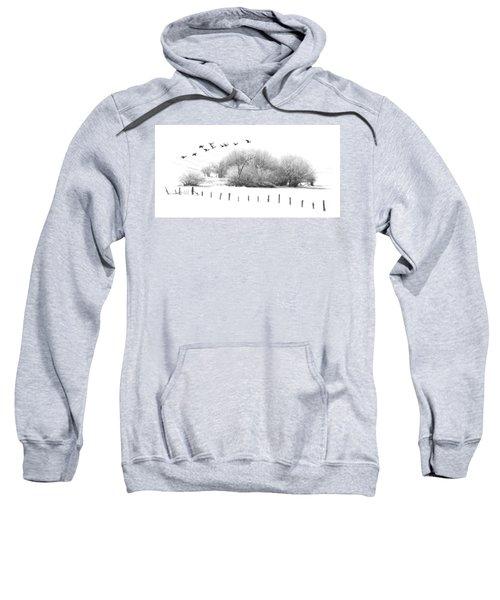 Frosty Flight Sweatshirt