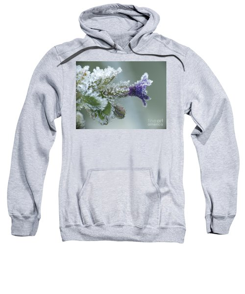 Frosty Flower Sweatshirt