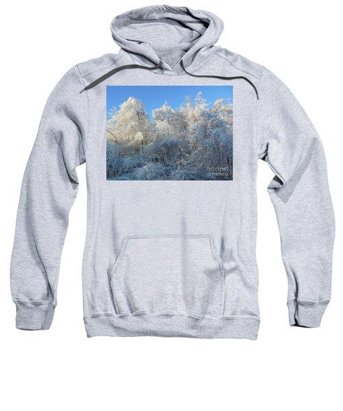 Frosty Trees Sweatshirt
