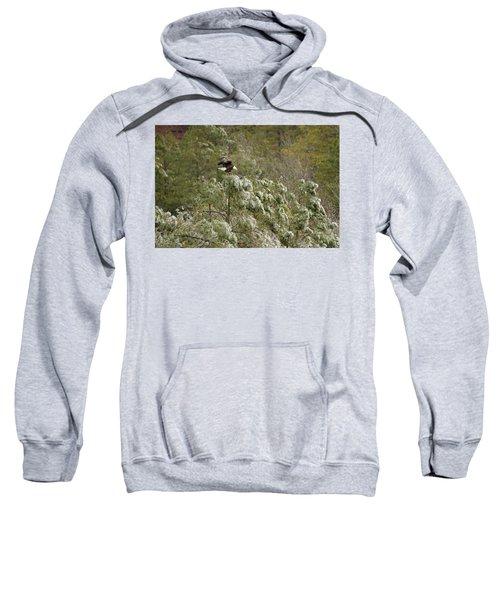 Frozen Call Sweatshirt