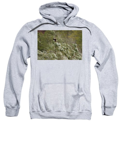 Frozen Call Sweatshirt