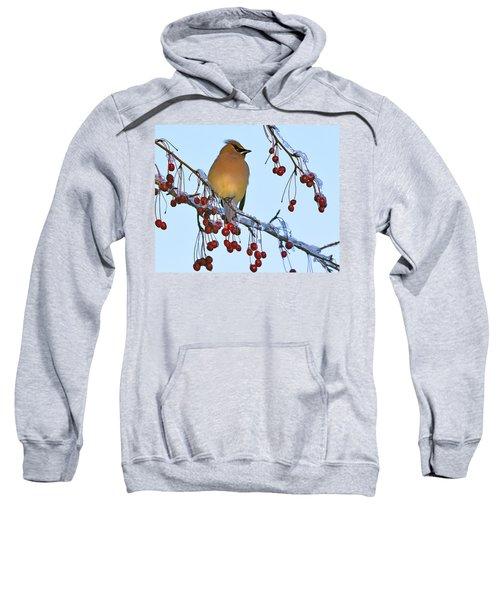 Frozen Dinner  Sweatshirt by Tony Beck