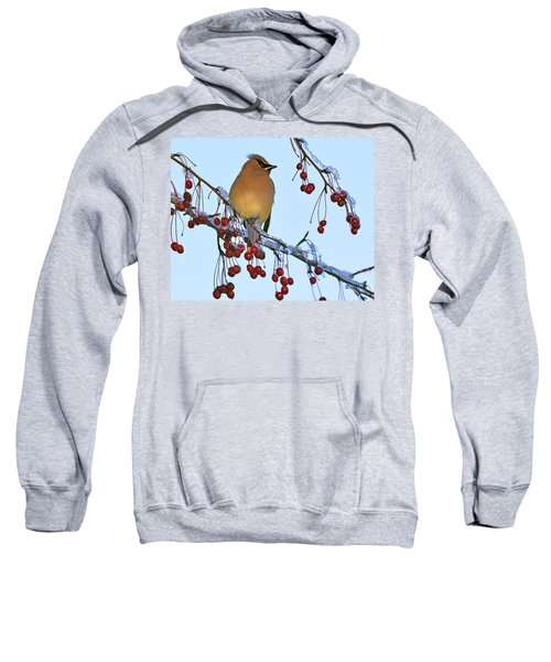Frozen Dinner  Sweatshirt
